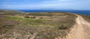 image of landscape near ocean